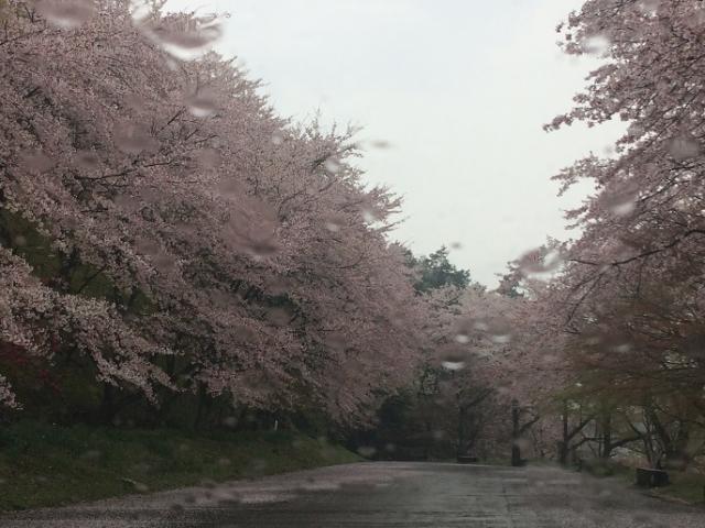 ラッキールーラーじゃんさんによる竹中公園のクチコミ写真
