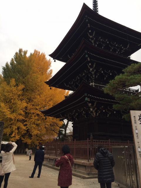 まなみさんによる飛騨国分寺のクチコミ写真