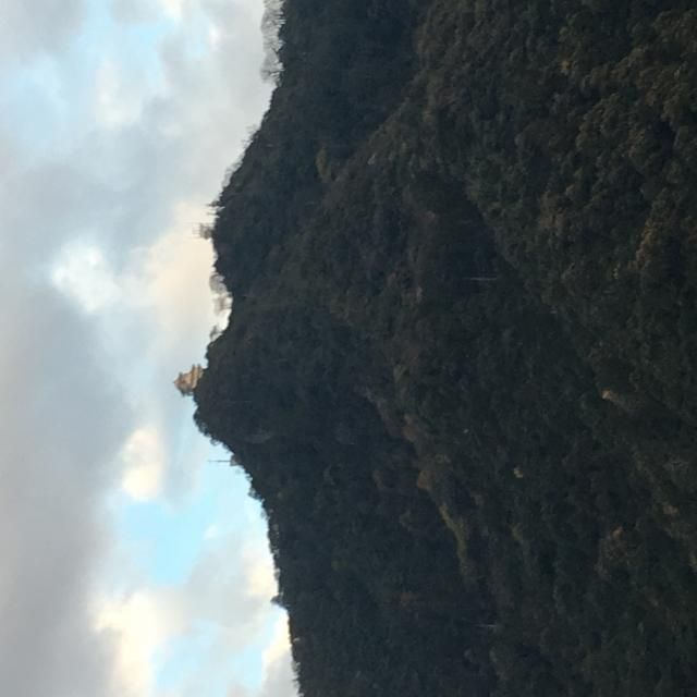 岐阜の食いしん坊担当さんによる金華山のクチコミ写真