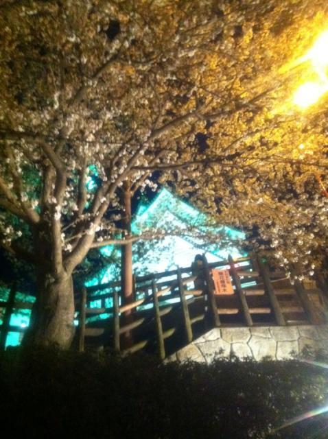 まなみさんによる墨俣城のクチコミ写真