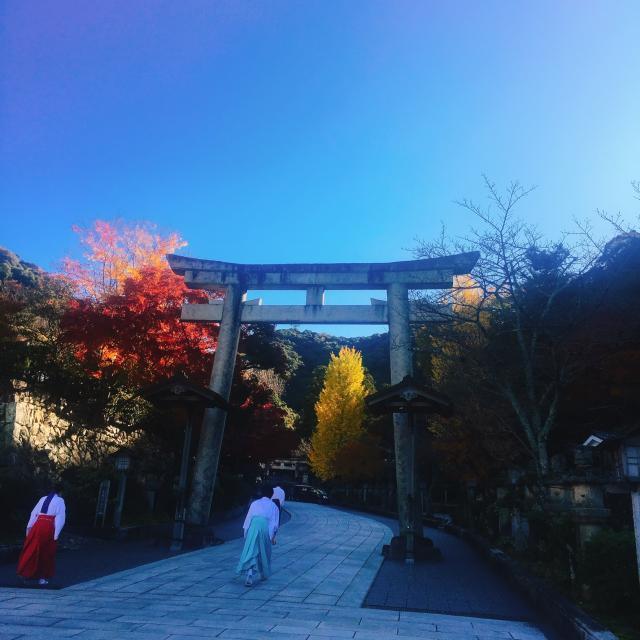 岐阜の食いしん坊担当さんによる伊奈波神社のクチコミ写真