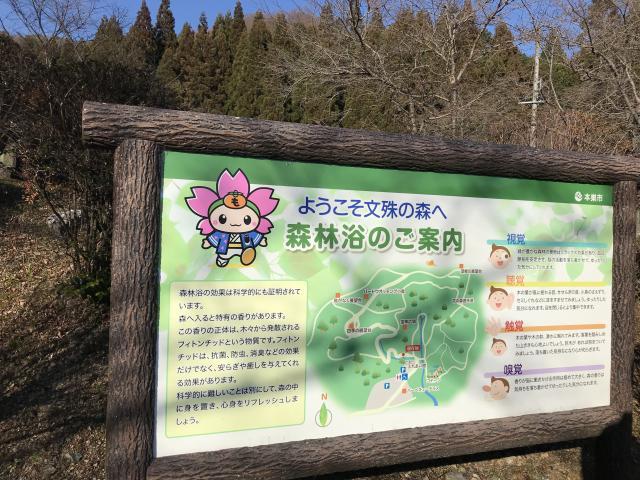 まなみさんによる文殊の森公園のクチコミ写真