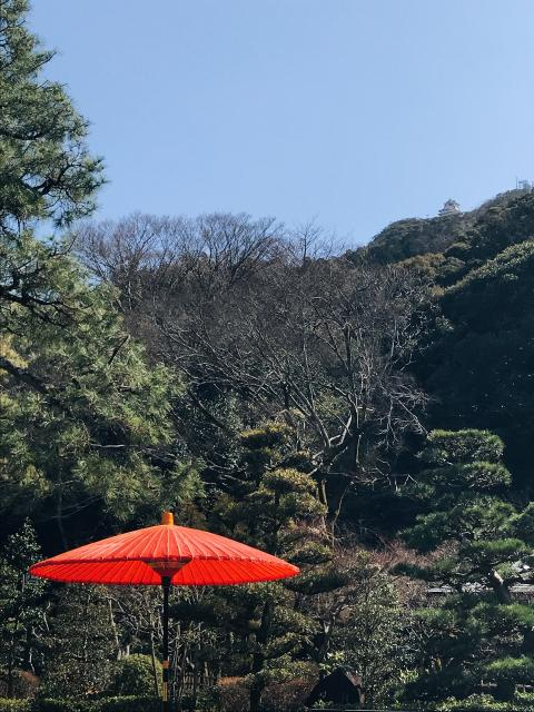 岐阜の食いしん坊担当さんによる岐阜公園のクチコミ写真