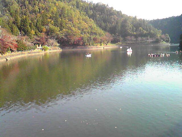 えーみーさんによる伊自良湖のクチコミ写真