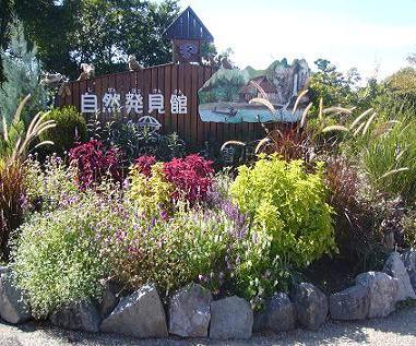 ゆかそさんによる河川環境楽園 自然発見館のクチコミ写真