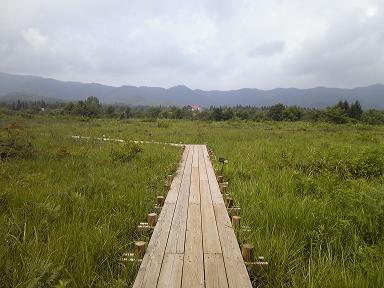 ゆかそさんによるひるがの湿原植物園のクチコミ写真